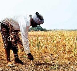 """Help Farmers – AidFarmers.com"""